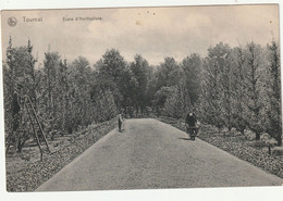 TOURNAI - Ecole D' Horticulture - Tournai