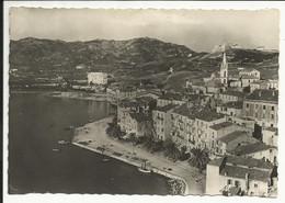 CALVI ( Corse ) , Vue Générale , 1949 - Calvi