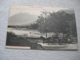Cpa Argelès, Hautes Pyrénées, Le Gave De Pau Et Le Viscos - Argeles Gazost