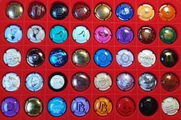 Lot De 40 CAPSULES Ou PLAQUES DE MUSELETS De CHAMPAGNE - Valeur Environ 86 € - Lot D1 - Collections