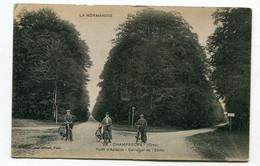 CPA  61 : CHAMPSECRET  Forêt D'Andaine   A  VOIR  !!!!!!! - Sonstige Gemeinden