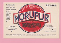 BU-1  Buvard 21x13,5 **   Huile De Foie De Morue Pour Animaux = Bovins/Chevaux/Chiens/Lapins/Volailles  + Vitamines - Animals