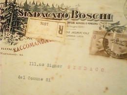 BUSTA  Roma X Labro PG Sindacato Boschi Agricoltura E Foreste VB1920 COPPIA 40 C MICHETTI HV2519 - Other