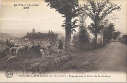 CPA Polignac Près Le Puy Paysage Sur La Route De St-Paulien - Otros Municipios