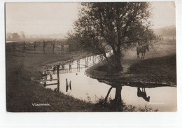 Renkum - Vischhek - Paard - 1925 - Renkum