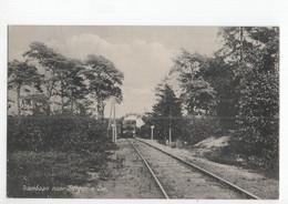 Bergen Aan Zee - Trambaan - Stoom Tram - 1920 - Otros