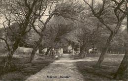 Den Haag - Duindal - Theetuin - 1920 - Den Haag ('s-Gravenhage)