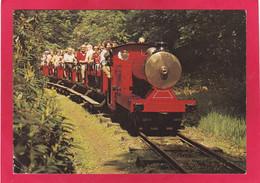 Modern Post Card Of Railways,Steam Trains,The Miniature Railway,Alton Towers,T10. - Altri