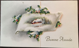 Cp Double, Bonne Année 1961, édition Coloprint, Illustration Paysage Enneigé,ferme, Sapins, Houx, Série 17627 D/3 - Nieuwjaar