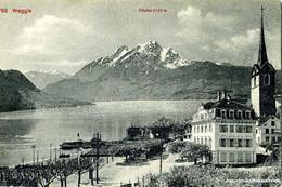 Weggis + Ca. 1910 - LU Lucerne