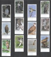 MV51 2018 EXCLUSIVE NIUAFO'OU FAUNA BIRDS OF PREY EAGLES OWLS !!! 22 EURO NOMINAL 1 BIG SET MNH - Adler & Greifvögel