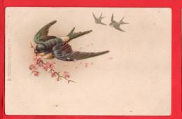 TUCK ART CHROMO   VIGNETTE  BIRD ART - Tuck, Raphael