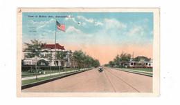 ALEXANDRIA, Louisiana, USA, View Of Bolton Street, 1919 WB Postcard - Other
