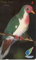 SINGAPUR. AVE - BIRD. Jambu Fruit Dove. 79SIGC. (956). - Otros