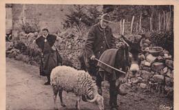 Bergers Moutons Troupeaux - Non Classificati