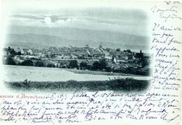 Avenches - Souvenir D'... Gruss Aus 1899 - VD Vaud