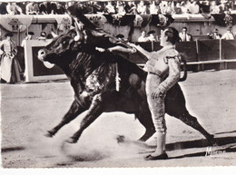 CHICUELO II DANS UNE PASSE HAUTE /CLICHE DUMOULIN (ANA13) - Bull