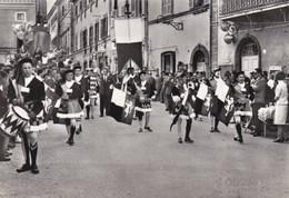 Cartolina - S. Ginesio, Macerata. Festa Del Crocifisso. - Macerata