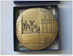 Superbe Médaille En Bronze YVES CHAUVIN  Prix Nobel De Chimie 2005 **** EN ACHAT IMMEDIAT **** - Professionnels / De Société