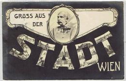 Gruss Aus Der Stadt WIEN - Kaiser Franz Joseph Gesendet 1904 - Wien Mitte