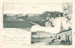 78797- Marimont-lès-Bénestroff Arrondissement Sarrebourg-Château-Salins 1901 - Sarrebourg