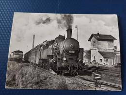 Steam Locomotive, Train . LOCOMOTIVE - Type 1E1  - Old Postcard - Treni