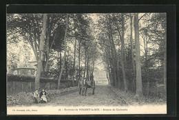 CPA Nogent-le-Roi, Avenue De Coulombs - Non Classificati