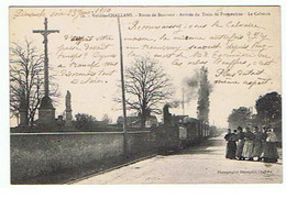 CHALLANS * ROUTE DE BEAUVOIR ARRIVEE DU TRAIN DE FROMENTINE * LE CALVAIRE *1910* - Challans