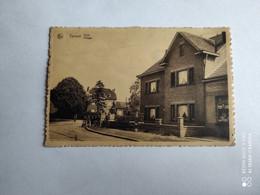 44535 -  Tervant  Beringen   Dorp - Beringen
