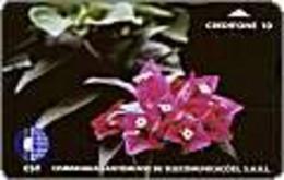 SAOTOME : STM02 10u Flowers Of Sao-tome MINT - San Tomé Y Príncipe
