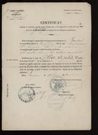 ° 7è CORPS D'ARMEE ° SUBDIVISION DE LANGRES ° CERTIFICAT DE DISPENSE .... 1880 ° - Historical Documents