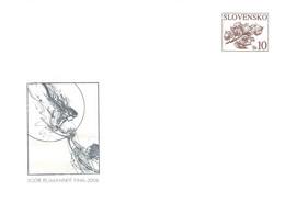 SLOVAKIA - STATIONARY ENVELOPE 2006 IGOR RUMANZKY Unc //Q99 - Postcards