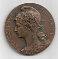 Médaille De L'assistance Publique 1901 - Professionnels / De Société
