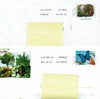 2 Enveloppes PAP - GUYANE - FRUIT AWARA Et PAPILLON MORPHO BLEU - PAP: Sonstige (1995-...)