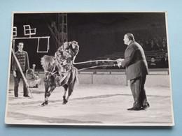 REVUE - CABARET - VARIETY Shows - TONEEL - OPERETTE - KOMEDIE - THEATER ( Detail Zie Scans ) CIRCUS ! - Theater, Kostüme & Verkleidung