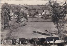GIOU DE MAMOU ( Vaches ) - Autres Communes