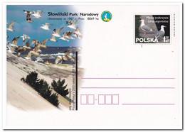 Polen, Postcard Unused, Birds - Postwaardestukken