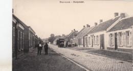 HOEVENEN / DORPZICHT - Stabroek