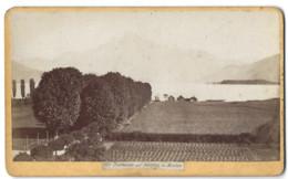 CDV - Die Lindenallee Mit Schafberg In MONDSEE - Autriche - Phot. F. Kohaut à Mondsee - Old (before 1900)