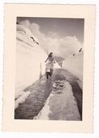 MOTO SCOOTER VESPA  - SCOOTER  - DONNA -  3 FOTOGRAFIE  ORIGINALI ANNO 1951 NEVE - Cars