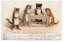 L130b119 - Dessin De Chatons Humanisés En Train De Cuisiner - Carte Précurseur Raphaël Tuck Série 4.3 - Cats
