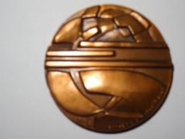 EDF Médaille Esthétique Industrielle En Cuivre De 1972 Graveur Carréga - Andere