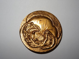 C.C.I.I. Du Val D'Oise Médaille Du Centre Robert Delorozoy Du 3 Octobre 1985 - Andere