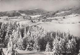 861) MÖNICHKIRCHEN - NÖ - Stark Verschneite Ansicht Mit Einzelnem HAUS U. Wald - 30.12.1966 - Wechsel