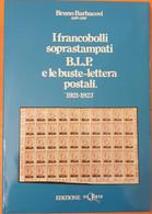 Livre Sur Les BLP, Lettre Avec Publicité D'Italie - Stamps For Advertising Covers (BLP)