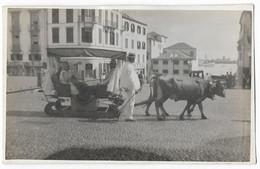 Portugal Madeira Bullock Carriage Photo Postcard P.11 - Colonie Portoghesi E Dipendenze - Non Classificati