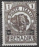 Somalia  Mh *  11 Euros Elephant - Oltre Giuba