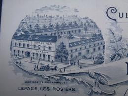 FACTURE - 49 - DEPARTEMENT DU MAINE ET LOIRE - LES ROSIERS SUR LOIRE 1900 - CULTURES DE GRAINES : LEPAGE FILS - Non Classés