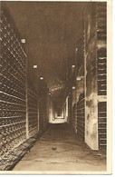 Carte Postale - CPA Dpt N°21 COTE D'OR - Ecrite - DIJON - Caves De La Maison Paul Court - Un Des Caveaux à Bouteilles. - Dijon