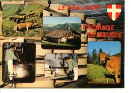 73270 Savoie - BEAUFORT SUR DORON - Lot De 2 CPM - Voir Détails Dans La Description - Beaufort